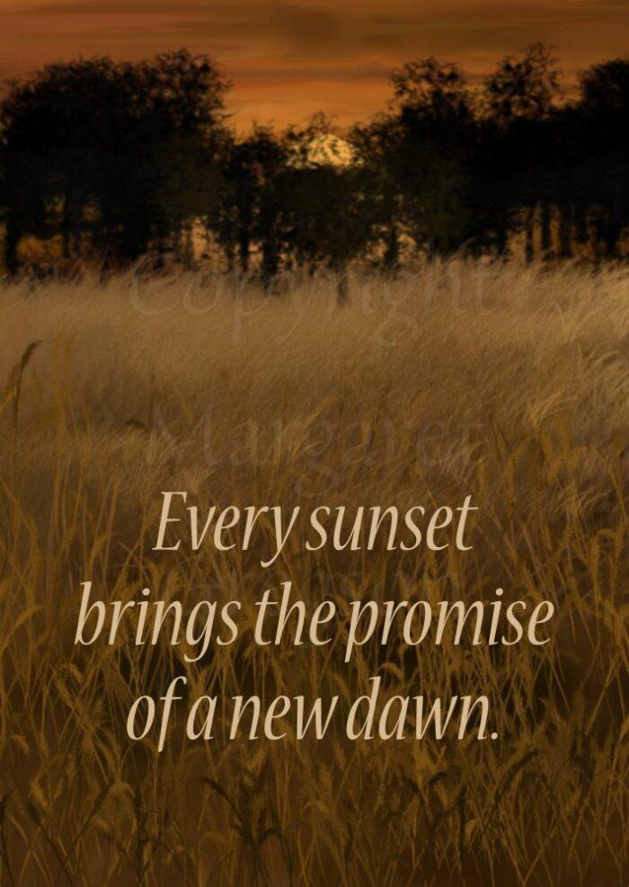 Dawn Promise