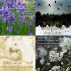 Inspirational Cards